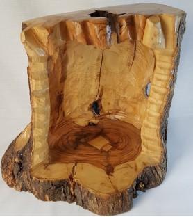 Large Tree Stump Nativity -...