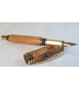 Fountain Pens Gold & Silver...